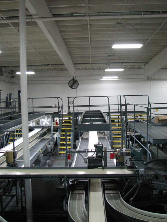 Photo of Stemilt packing line