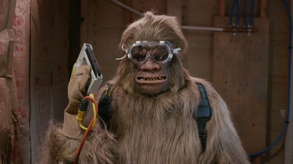 Bigfoot looks at camera with staple gun_blog