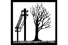 Image of a tree that was done with Directional Pruning