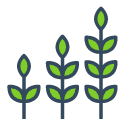 plants growing icon