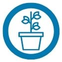 potted plant with three branches icon