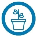 potted plant with two branches icon