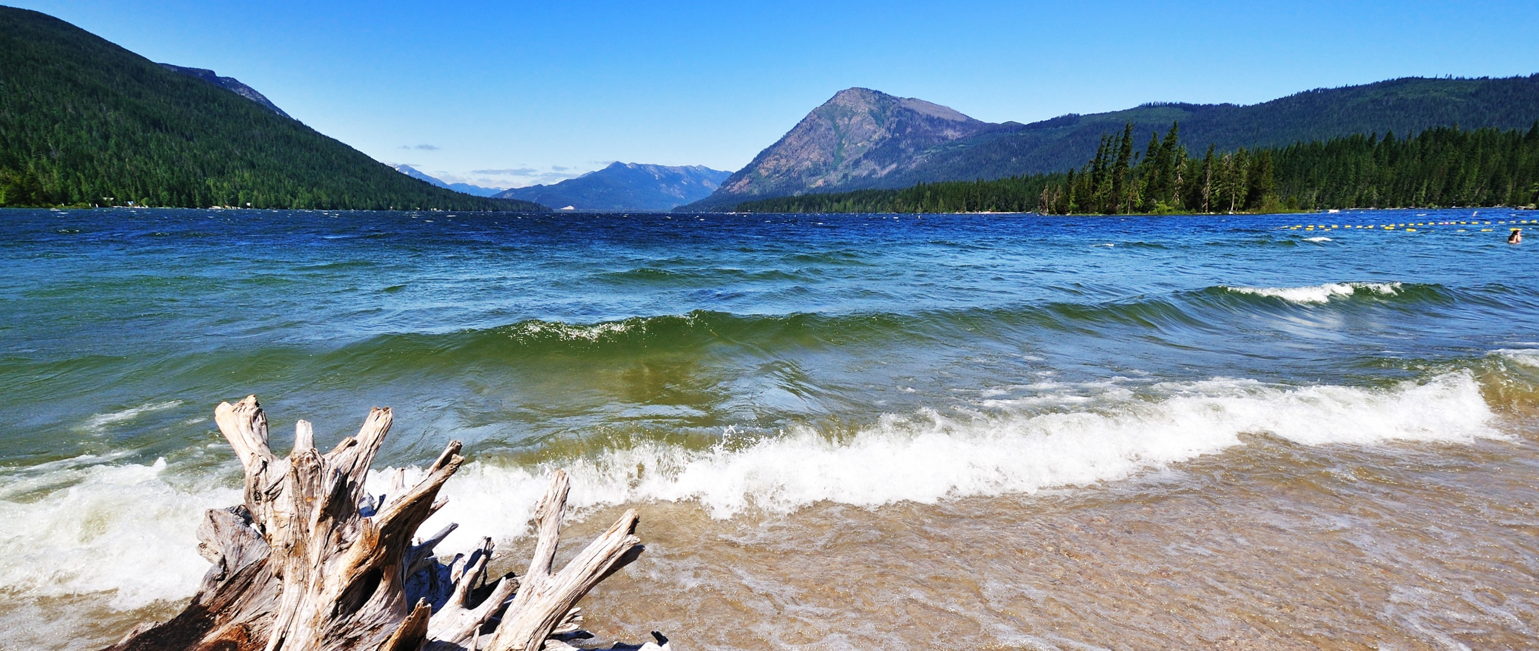 A photo of the shore of Lake Wenatchee
