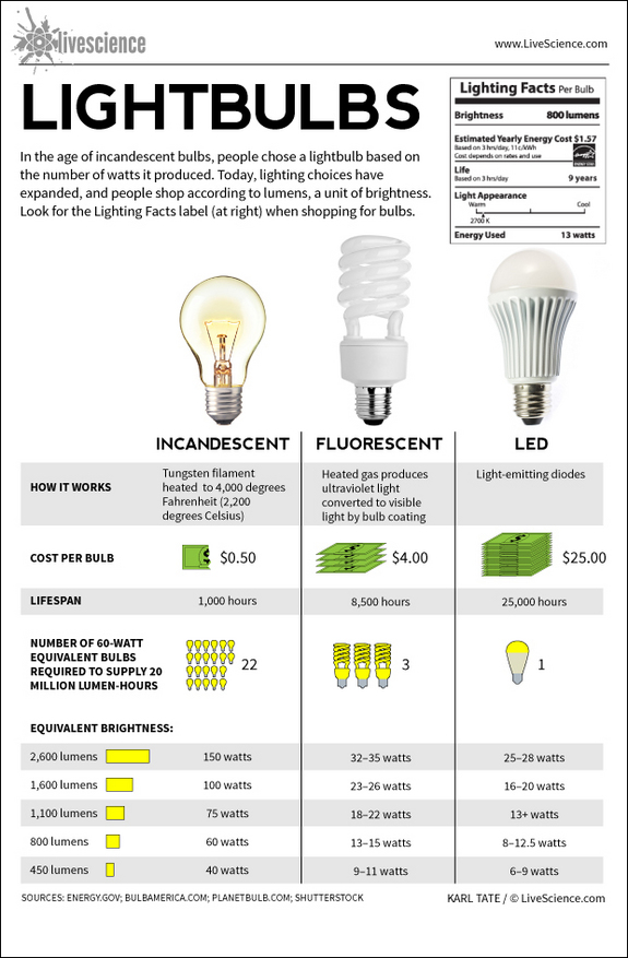 life science bulbs