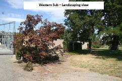 Q-Western landscaping