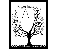 Diagram of a vpruning tree